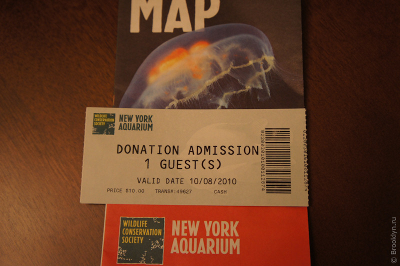 Ny brooklyn aquarium coupons